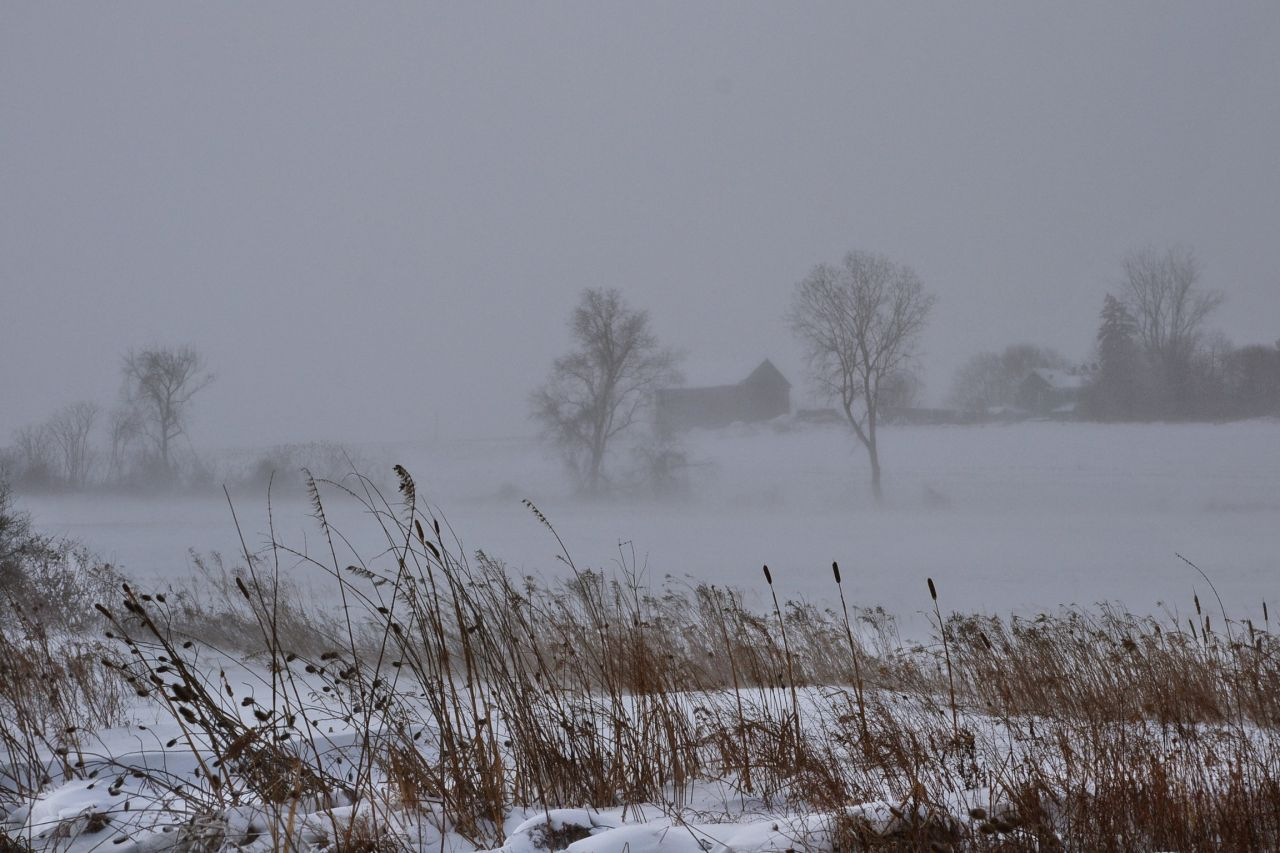 Whiteout over the weekend (photo)